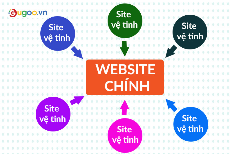 thiet ke website ve tinh