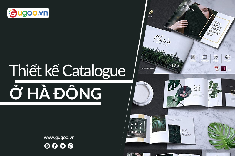 thiet ke catalogue o ha dong