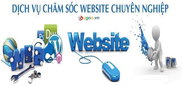 dich vu cham soc website