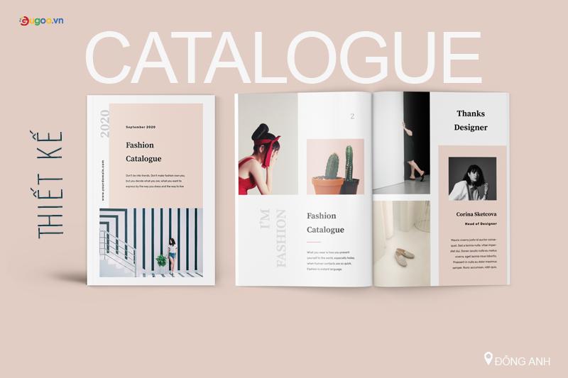thiet ke catalogue tai dong anh