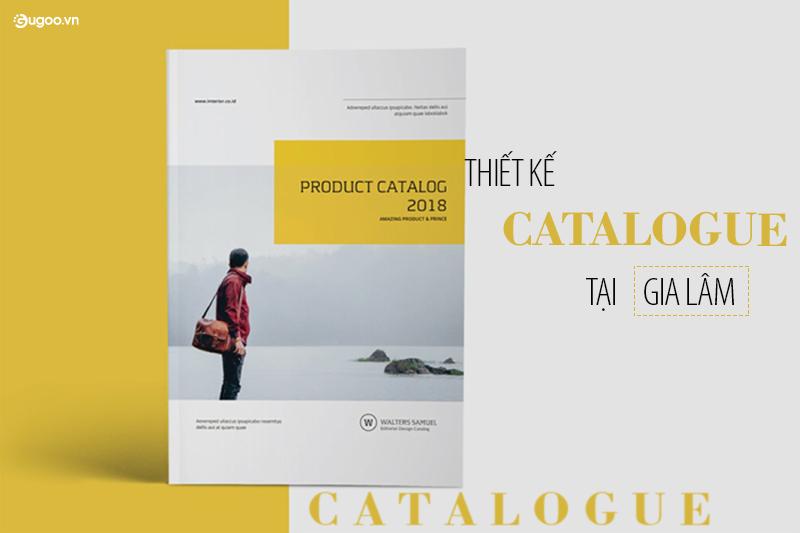 thiet ke catalogue tai gia lam