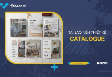 Tại Sao Nên Thiết Kế Catalogue