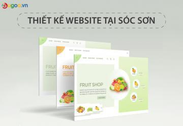 Thiết Kế Website Vệ Tinh Tại Sóc Sơn