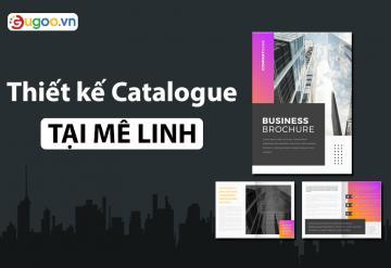Công Ty Thiết Kế Catalogue Chuyên Nghiệp Ở Mê Linh